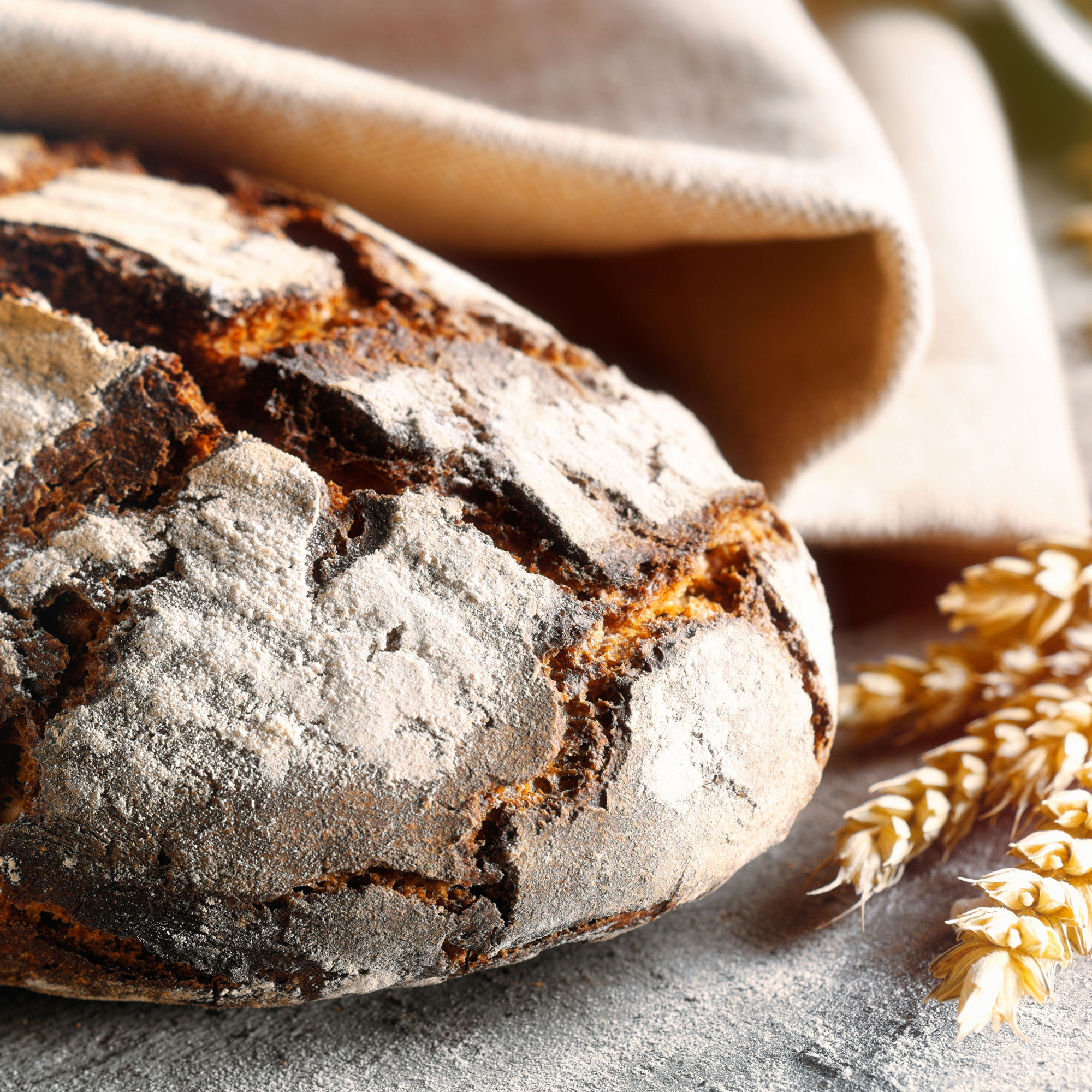Formation Collaborateur·rice en boulangerie artisanale et durable