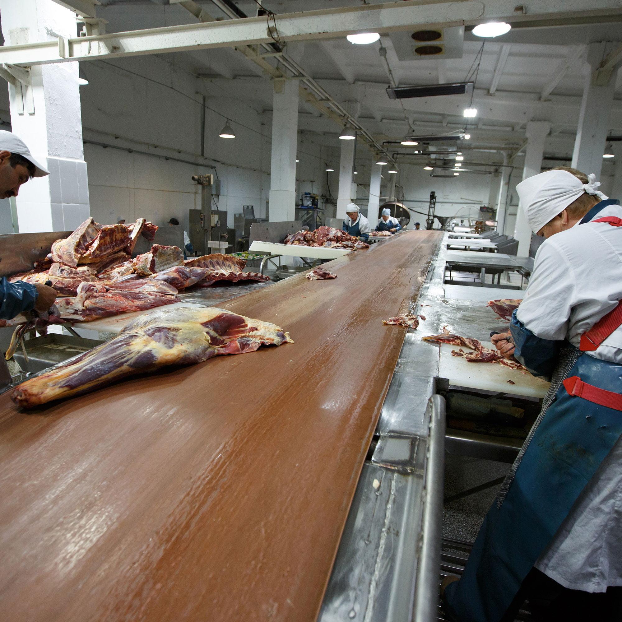 Formation manoeuvre boucher